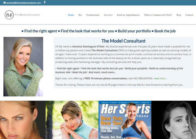 themodelconsultant.com